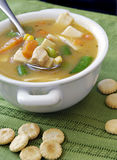 Chicken And Vegetable Soup Stock Image
