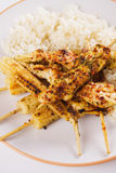 Chicken and baby corn skewer Royalty Free Stock Photos