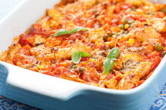 Chicken baked with vegetables Stock Images