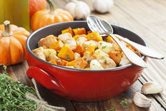 Chicken baked with pumpkin Royalty Free Stock Photos