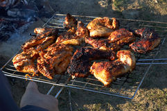 Chicken barbecue. It is prepared on campfires Stock Images