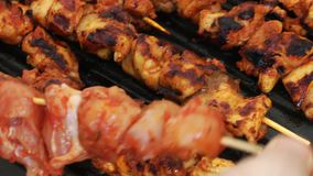 Chicken Barbecue in Coal Fire stock footage