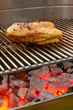 Chicken on the barbecue with coils. Cooking tastetful meat on a barbecue outside in the garden Stock Photography