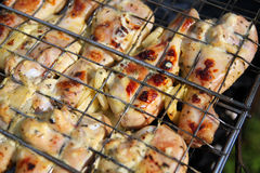 Chicken barbecue in metal grate Stock Photography
