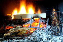 Chicken Barbecue. Outdoor life, somewhere for the Italy royalty free stock photography