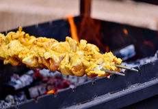 Chicken barbeque skewers Stock Image