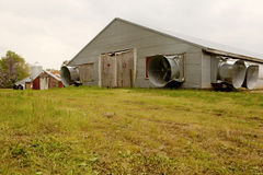 A chicken barn, Chesapeake Royalty Free Stock Images