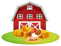 Chicken and barn Royalty Free Stock Images