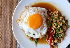 Chicken basil and fried eggs white rice Royalty Free Stock Image