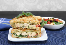 Chicken, basil, spinach, tomato, pesto and cheese panini. Royalty Free Stock Images
