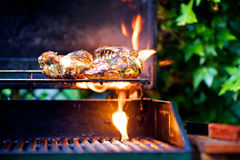 Chicken on BBQ Royalty Free Stock Photography