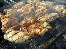 Free Chicken BBQ Royalty Free Stock Images - 21260889