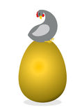 Chicken on  big  golden egg. Bird nests precious eggs. Farm bird Stock Image