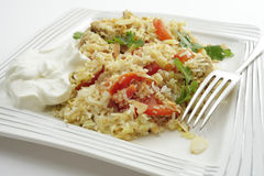Chicken biriyani meal Stock Photography