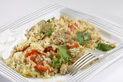 Chicken biriyani with yoghurt Royalty Free Stock Image