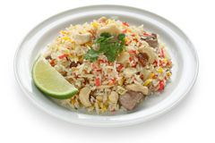 Chicken biryani , indian pilau rice. On white background Royalty Free Stock Photography