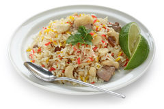 Chicken biryani , indian pilau rice. On white background Stock Image