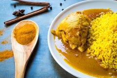 Chicken Biryani with rice Royalty Free Stock Photo