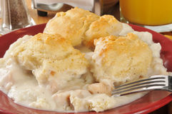 Chicken biscuit casserole Royalty Free Stock Photography