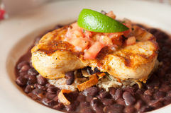 Chicken with Black Beans and Rice Stock Image