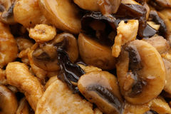 Chicken with black and white mushrooms and bamboo shoots Royalty Free Stock Photo