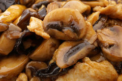 Chicken with black and white mushrooms and bamboo shoots Royalty Free Stock Image