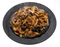 Chicken with black and white mushrooms and bamboo shoots Royalty Free Stock Photography