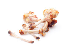 Chicken Bones. On white background royalty free stock photos