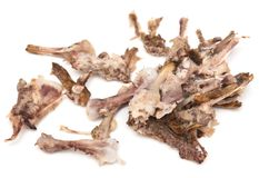 Chicken bones. Isolated on white background stock photography