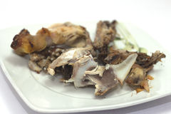 Chicken bones Stock Images