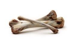 Chicken bones Royalty Free Stock Photos