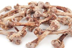 Chicken bones. On white background royalty free stock photo
