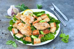Bread crumb salad. Chicken bread crumb salad with kale on a plate royalty free stock photography