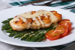 Chicken breast with asparagus and Hollandaise sauce closeup Stock Photography