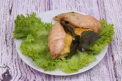 Chicken breast baked with cheese submitted on leaves of green salad Royalty Free Stock Photography