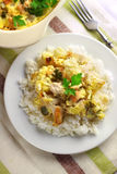Chicken breast and cauliflower casserole with rice Royalty Free Stock Images