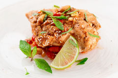 Chicken breast cooked in asian style Royalty Free Stock Photo