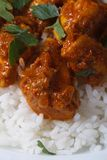 Chicken breast in curry sauce with rice vertical close up Stock Photos