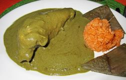 Chicken Breast With Green Mole Sauce royalty free stock image