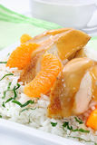 Chicken breast with mandarin Stock Photos