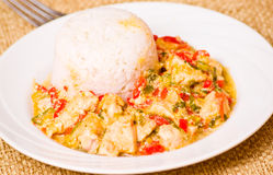 Chicken Breast with Rice and vegetables Royalty Free Stock Photos