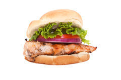 Chicken breast sandwich Stock Photography