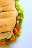 Chicken breast sandwich from top Stock Image