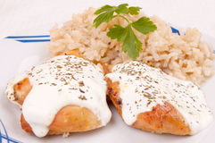Chicken breast with sauce and brown rice Stock Photos