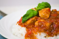 Chicken breast with sauce and rice Stock Image