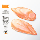 Chicken breast vector. Fresh chicken breast. Top view.  on a white vintage vector  sketch hand drown Stock Photos