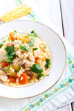 Chicken breast and vegetable casserole Royalty Free Stock Photo