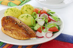 Chicken breast with vegetables Royalty Free Stock Photos