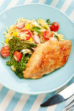 Chicken Breast With Pasta Salad And Broccolini Stock Images