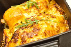 Chicken breasts baked in cheese Stock Images